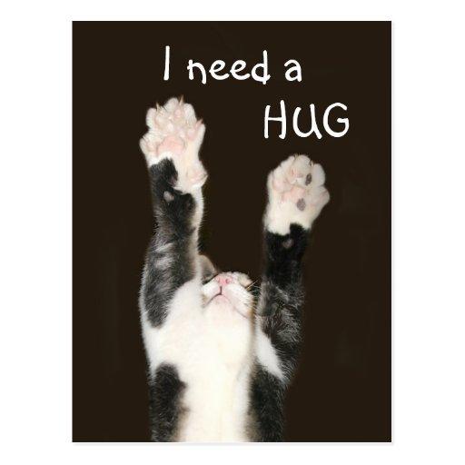 I need a hug kitty postcard