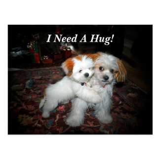 I Need A Hug! Postcard