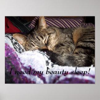 I need my beauty sleep! poster