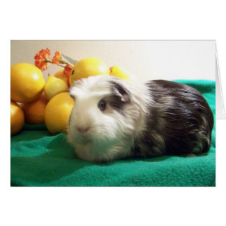 I need you more than a guinea pig needs Vitamin C Card