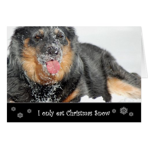 I Only Eat Christmas Snow Card