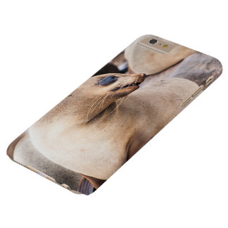 I phone S6 Protective Case Cape Fur Seal