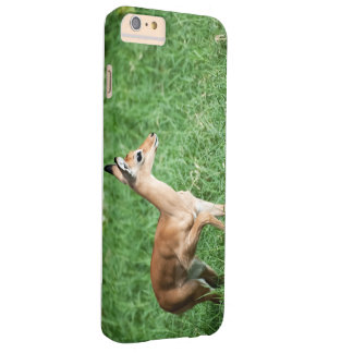 I phone S6 Protective Case with Baby Impala