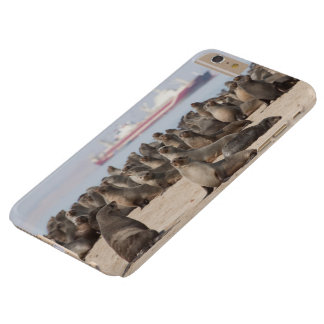 I phone S6 Protective Case with Colony of Seals