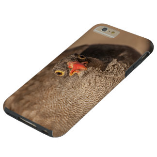 I phone S6 Protective Case with Grouse