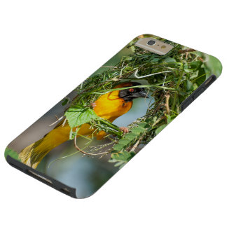 I phone S6 Protective Case with Masked Weaver Bird