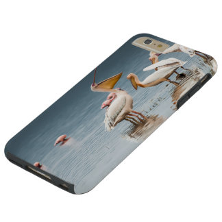 I phone S6 Protective Case with Pelicans at Lake