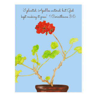 I planted~Apol'los Watered~God Makes it Grow Prin Postcard