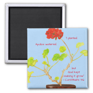 I Planted...God Made it Grow Scripture Magnet