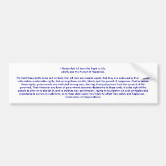 I Pledge Declaration of Independence jGibney Bumper Sticker