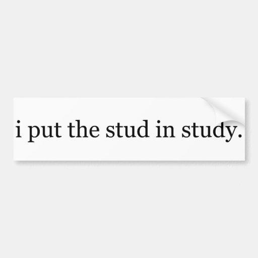 i put the stud in study bumper sticker! bumper sticker