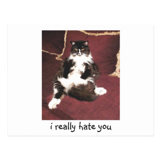 i really hate you postcard