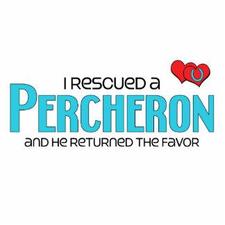 I Rescued a Percheron (Male Horse) Photo Cutout