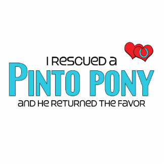 I Rescued a Pinto Pony (Male Pony) Photo Cut Outs