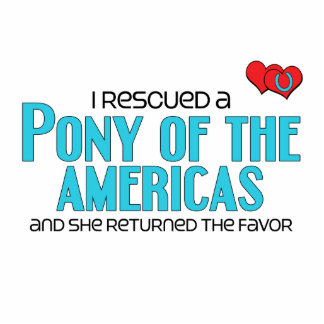 I Rescued a Pony of the Americas (Female Pony) Photo Cutout