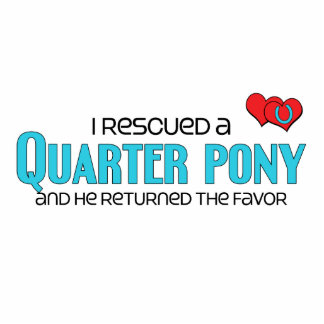 I Rescued a Quarter Pony (Male Pony) Photo Cut Out