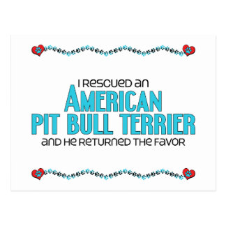 I Rescued an American Pit Bull Terrier (Male Dog) Post Card