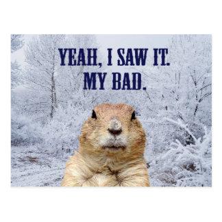 I Saw It Groundhog Day Postcard