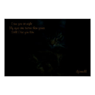 I see you at night Cat Haiku Poster
