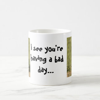 I see you're having a bad day owl mugs