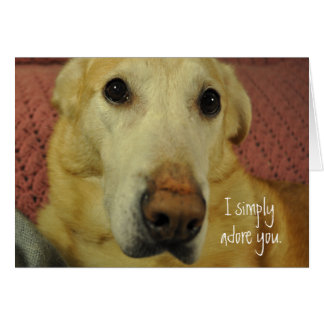I Simply Adore You Greeting Card