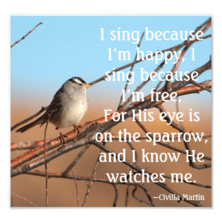 I sing because I'm happy Sparrow Photo Print