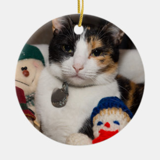 I Spy A Calico Ceramic Ornament