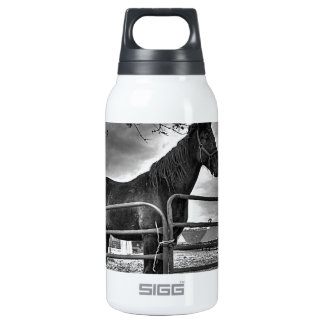 I Stand Alone 0.3L Insulated SIGG Thermos Water Bottle