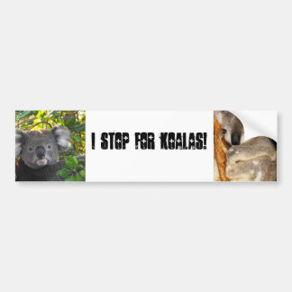 I Stop For Koalas Bumper Sticker