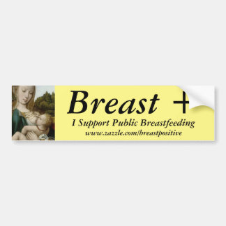 I Support Public Breastfeeding Bumper Sticker