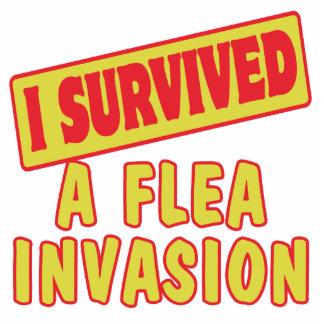 I SURVIVED A FLEA INVASION PHOTO CUTOUTS