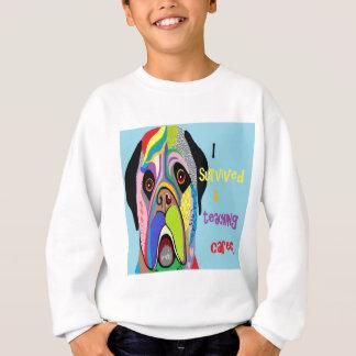I Survived a Teaching Career Sweatshirt