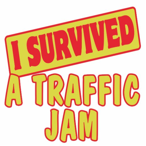I SURVIVED A TRAFFIC JAM PHOTO CUT OUTS