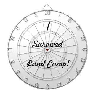 I survived band camp! dartboards