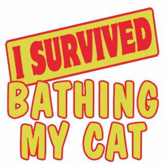 I SURVIVED BATHING MY CAT PHOTO SCULPTURES