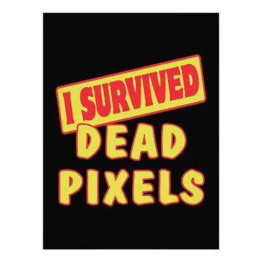 I SURVIVED DEAD PIXELS PERSONALIZED INVITE