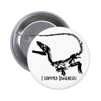 I Survived Diagenesis Boton 6 Cm Round Badge