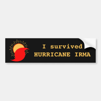 I Survived Hurricane Irma Bumper Sticker