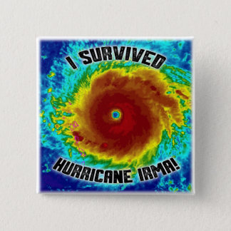 I Survived Hurricane Irma Button