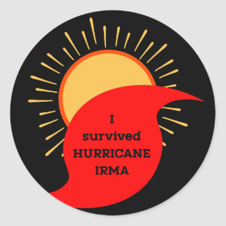 I Survived Hurricane Irma Classic Round Sticker