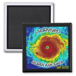 I Survived Hurricane Irma Magnet