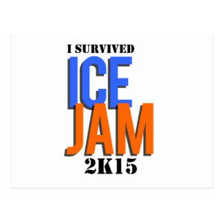 I Survived ICE JAM 2K15 Postcard