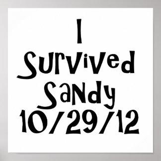 I Survived Sandy 10-29-12 Black.png Poster