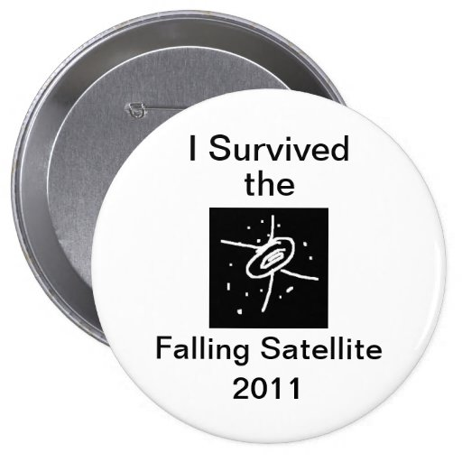 I Survived the Falling Satellite button