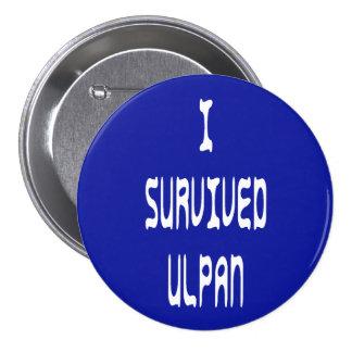 I Survived Ulpan 7.5 Cm Round Badge