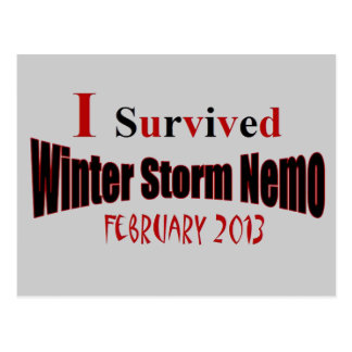 I Survived Winter Storm NEMO Postcard