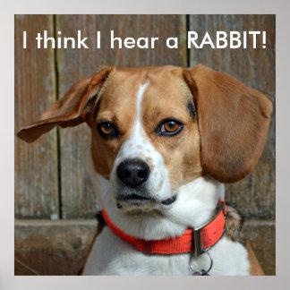 I think I hear a RABBIT! Beagle Poster