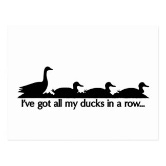 I ve got all my ducks in a row post card