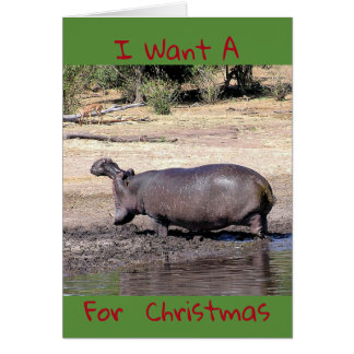 """""""I Want A (photo of hippo) For Christmas"""" humorous Card"""