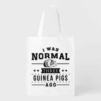 I Was Normal Three Guinea Pigs Ago